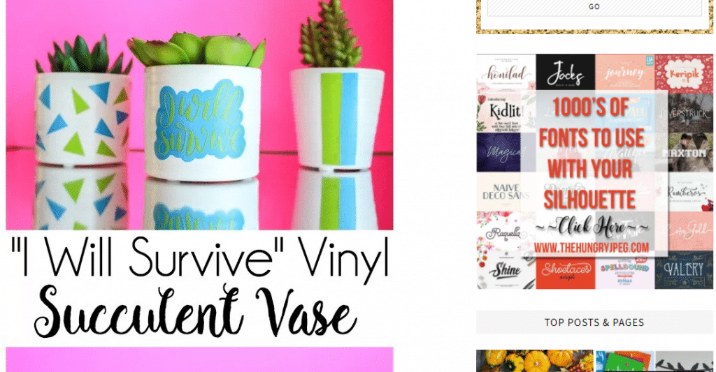 heat transfer vinyl on succulent pots colorful cactus containers